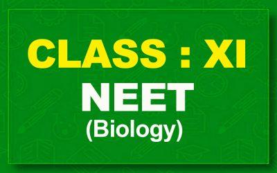 11th Biology : NEET