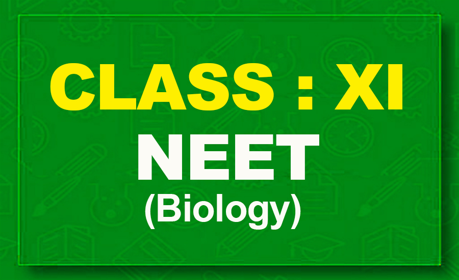 11th Biology : NEET