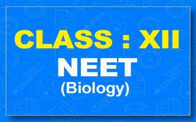12th Biology : NEET