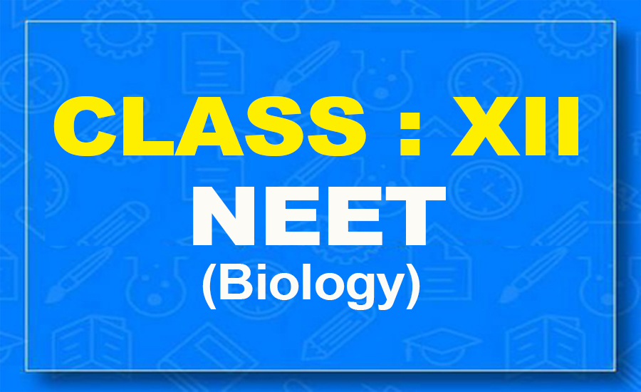 12th Biology : NEET