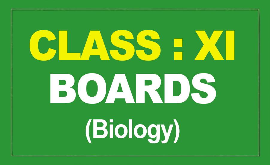 11th Biology : Boards